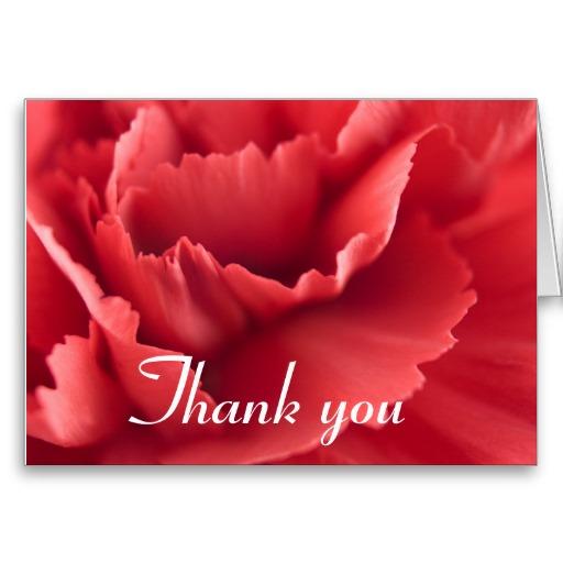 Cravo vermelho e um cartão de agradecimento